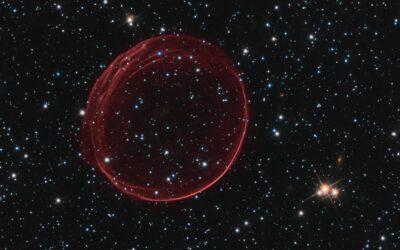 Podríem tindre un registre de les supernoves basades en els anells dels arbres